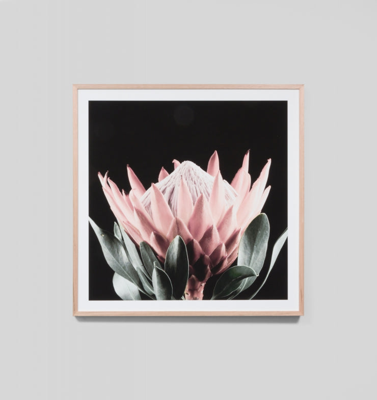 NATIVE BLOOM · FRAMED PRINT - The Banyan Tree Furniture & Homewares