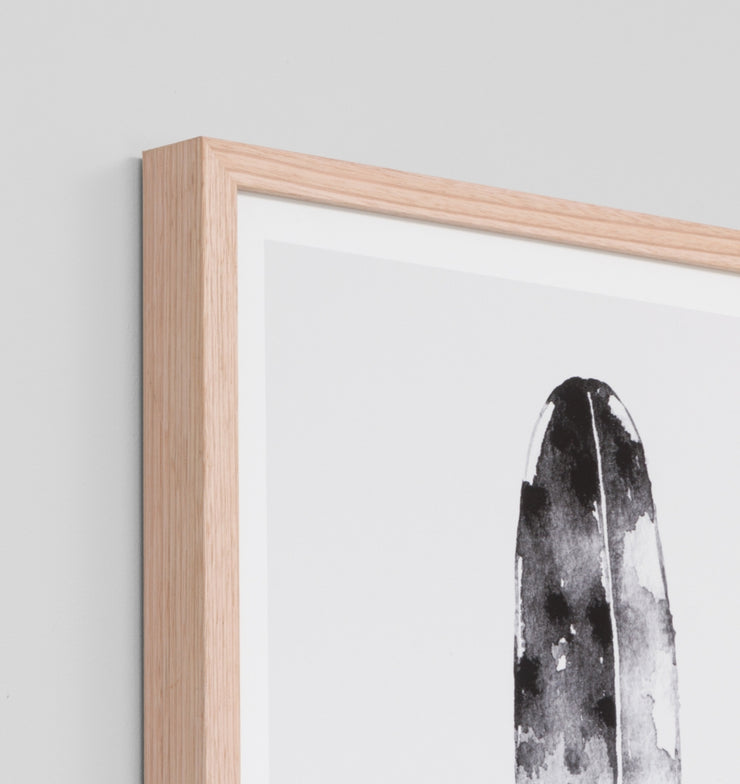 FEATHER BLACK 4 · FRAMED PRINT - The Banyan Tree Furniture & Homewares
