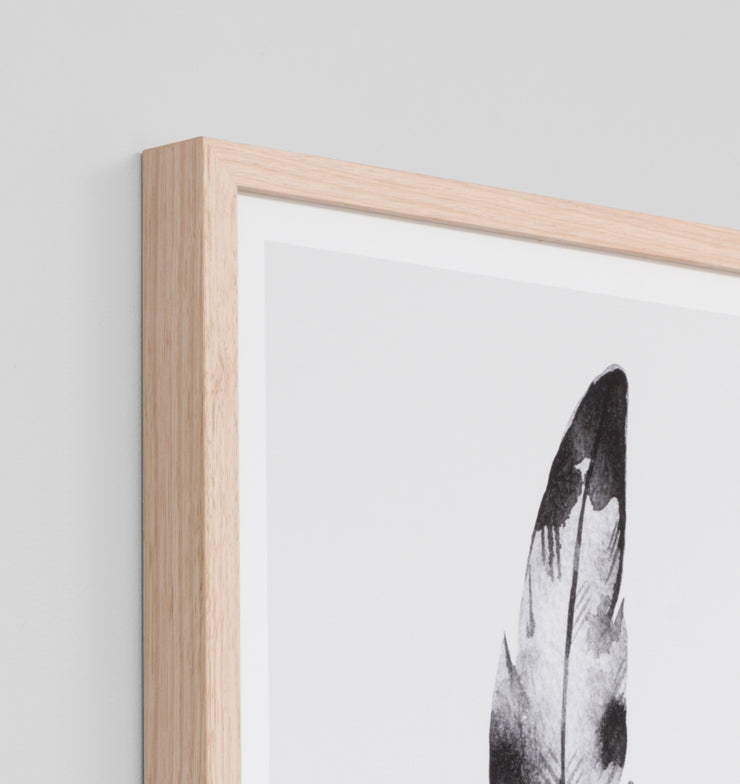 FEATHER BLACK 1 · FRAMED PRINT - The Banyan Tree Furniture & Homewares