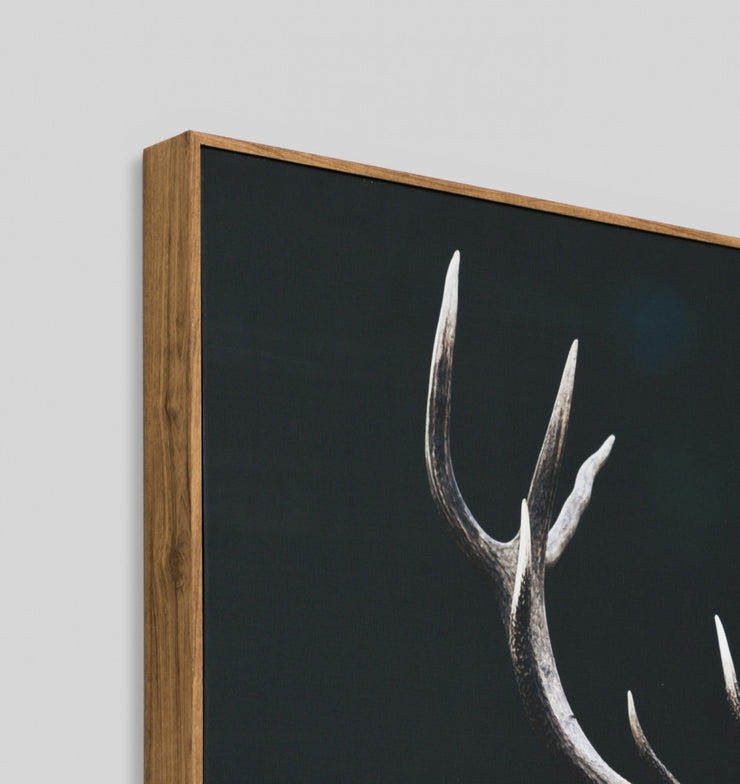 MEADOW DEER · FRAMED CANVAS - The Banyan Tree Furniture & Homewares