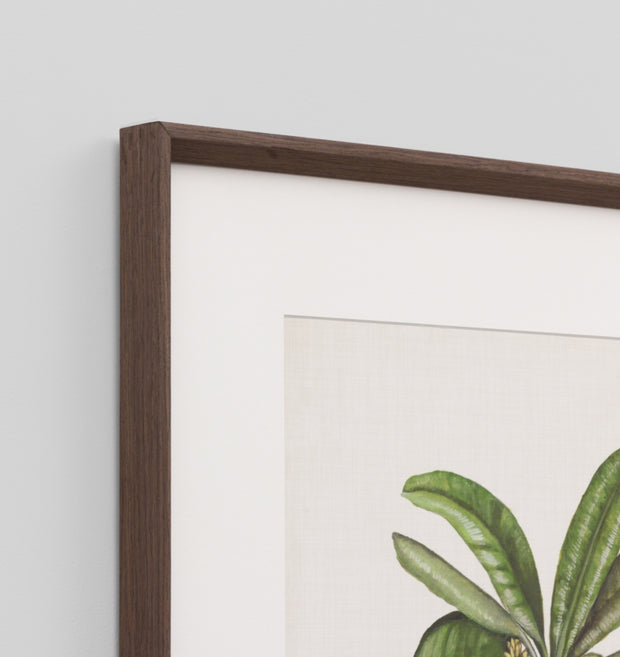 BRITISH PALMS 2 · FRAMED PRINT