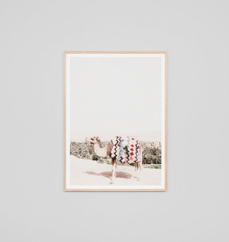 DESERT CAMEL · FRAMED PRINT - The Banyan Tree Furniture & Homewares