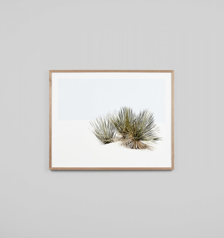 DESERT GRASSES | FRAMED PRINT - The Banyan Tree Furniture & Homewares