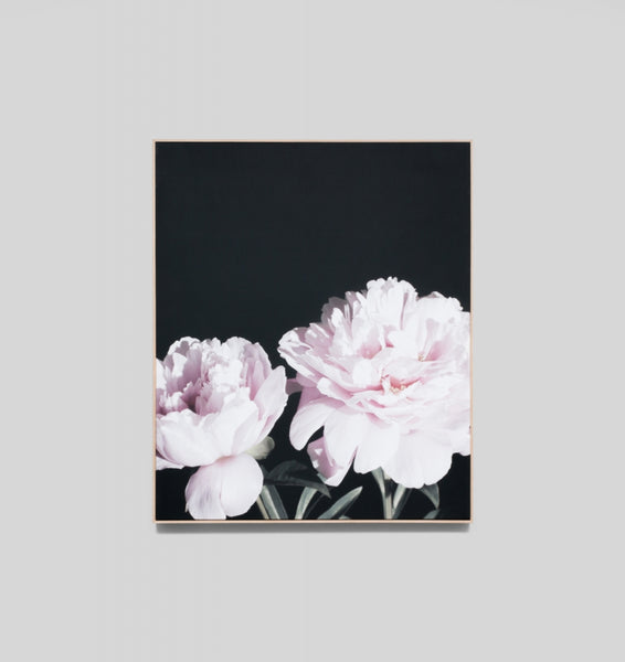 PEONY NIGHT · FRAMED CANVAS