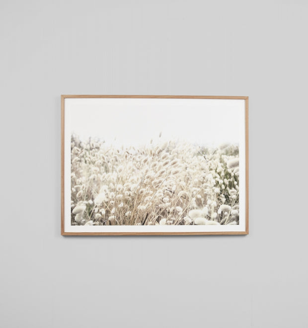 DUNE GRASS · FRAMED PRINT
