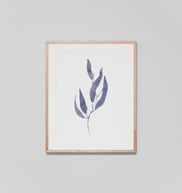 EUCALYPTUS LEAVES 1 · FRAMED PRINT
