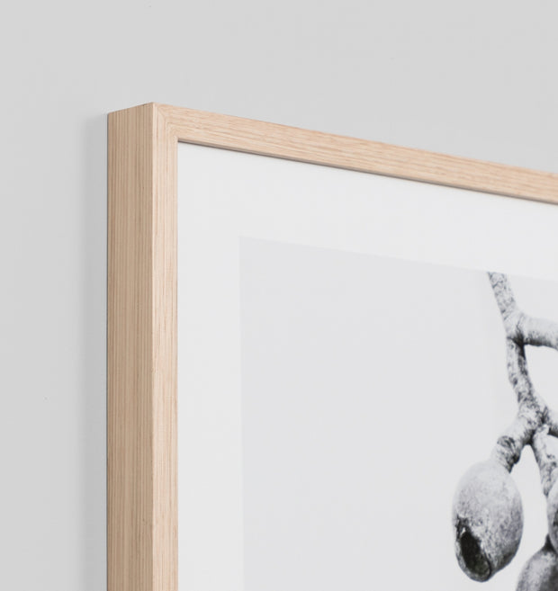 GREEN GUM RAW · FRAMED PRINT
