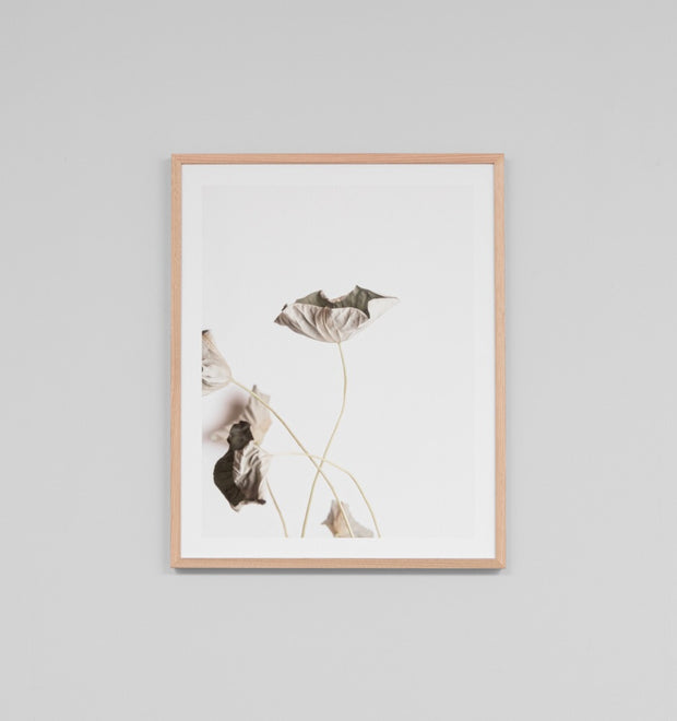 LOTUS 2 · FRAMED PRINT