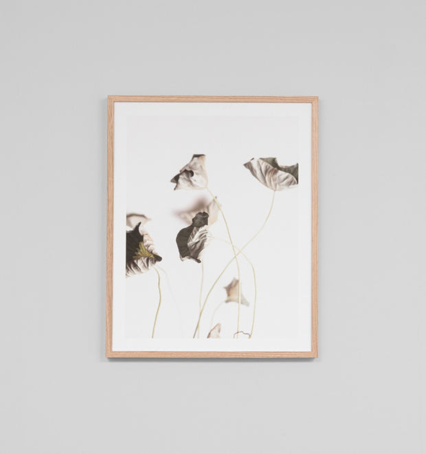LOTUS 1 · FRAMED PRINT