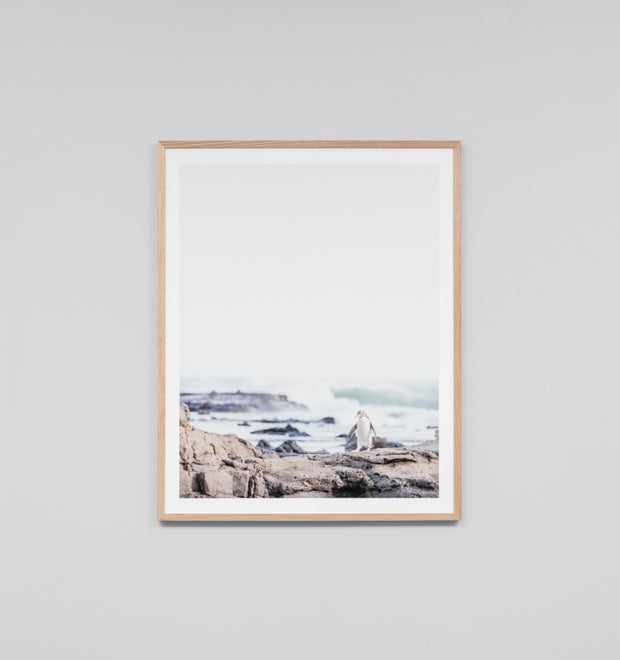 PENGUIN · FRAMED PRINT
