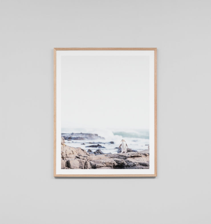 PENGUIN · FRAMED PRINT - The Banyan Tree Furniture & Homewares