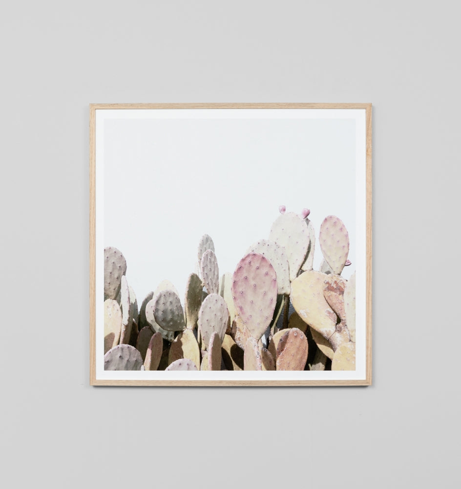 PRICKLY PEAR GARDEN · FRAMED PRINT