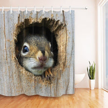 Load image into Gallery viewer, LB Cute American Red Squirrel in a Wood Hole Shower Curtain Mat Set Waterproof  For Kids Bathtub Decor