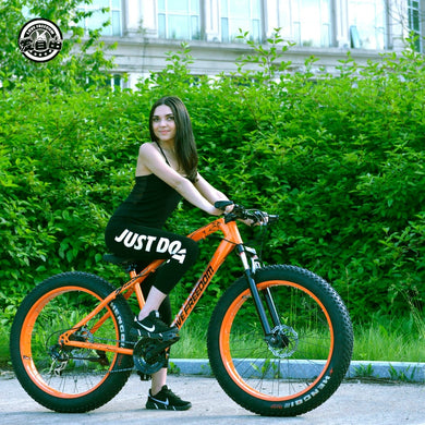 27 Speed Mountain  Bicycle  Snow Bike
