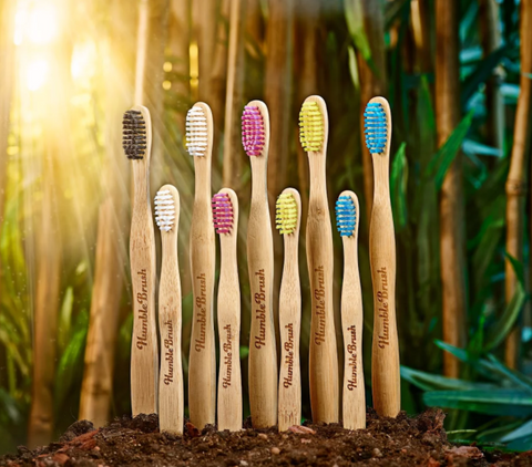 Humble Brush - Adult Bamboo Toothbrush | Humble Brush - 成人環保竹牙刷