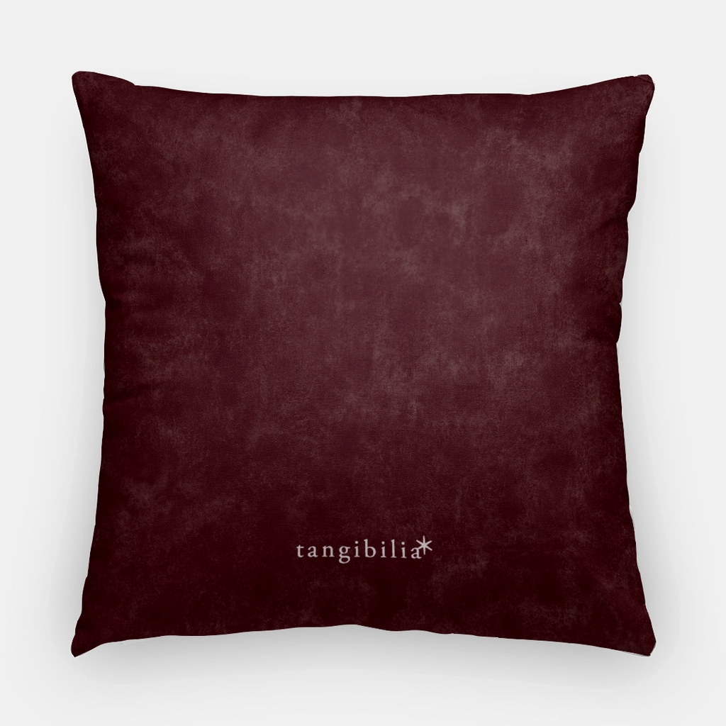 "Throw pillow case | 20"" square 