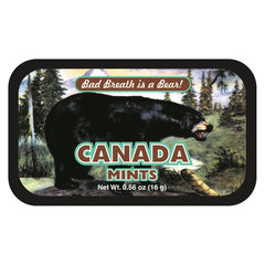 Black Bear Bad Canada - 0086S