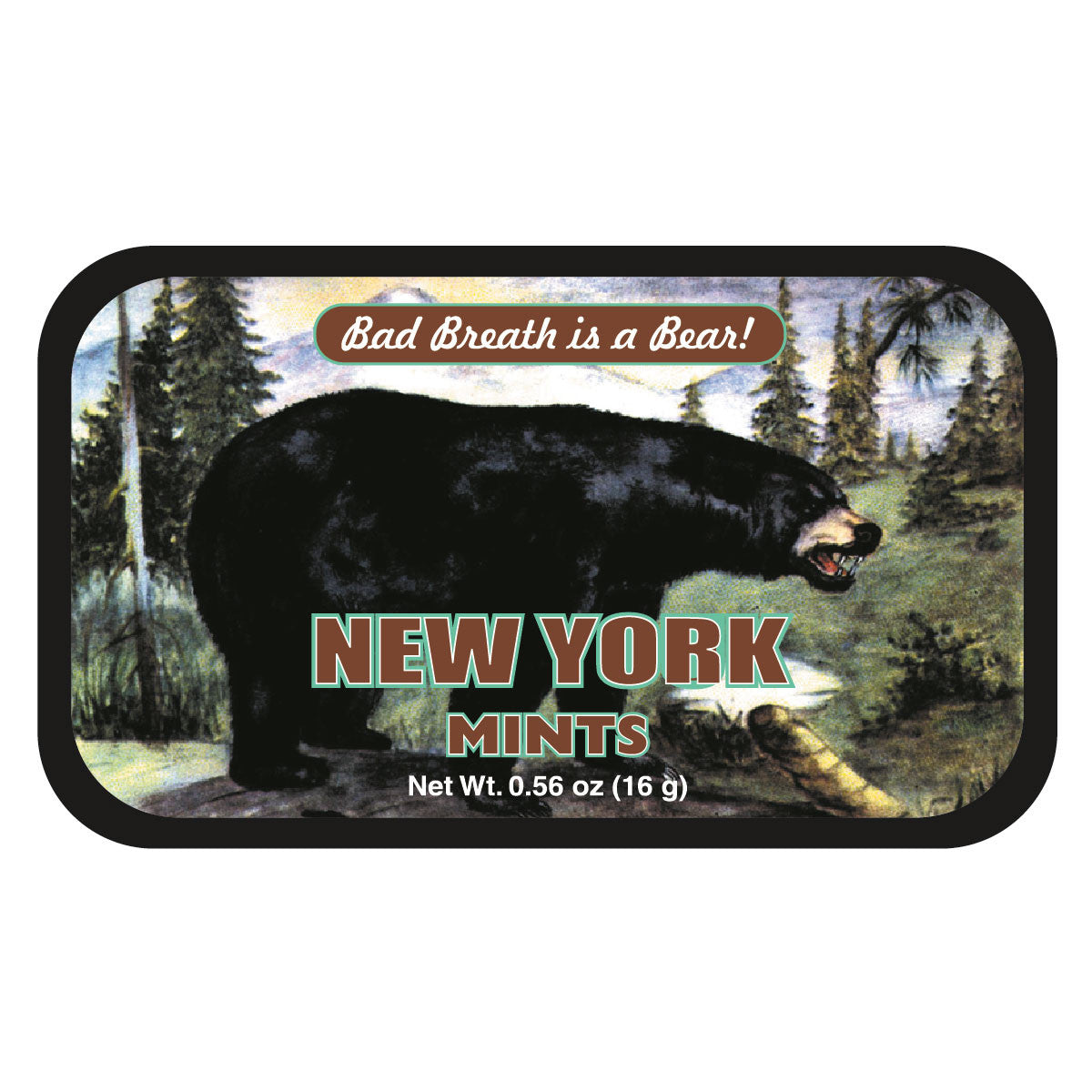 Black Bear Bad New York - 0086S