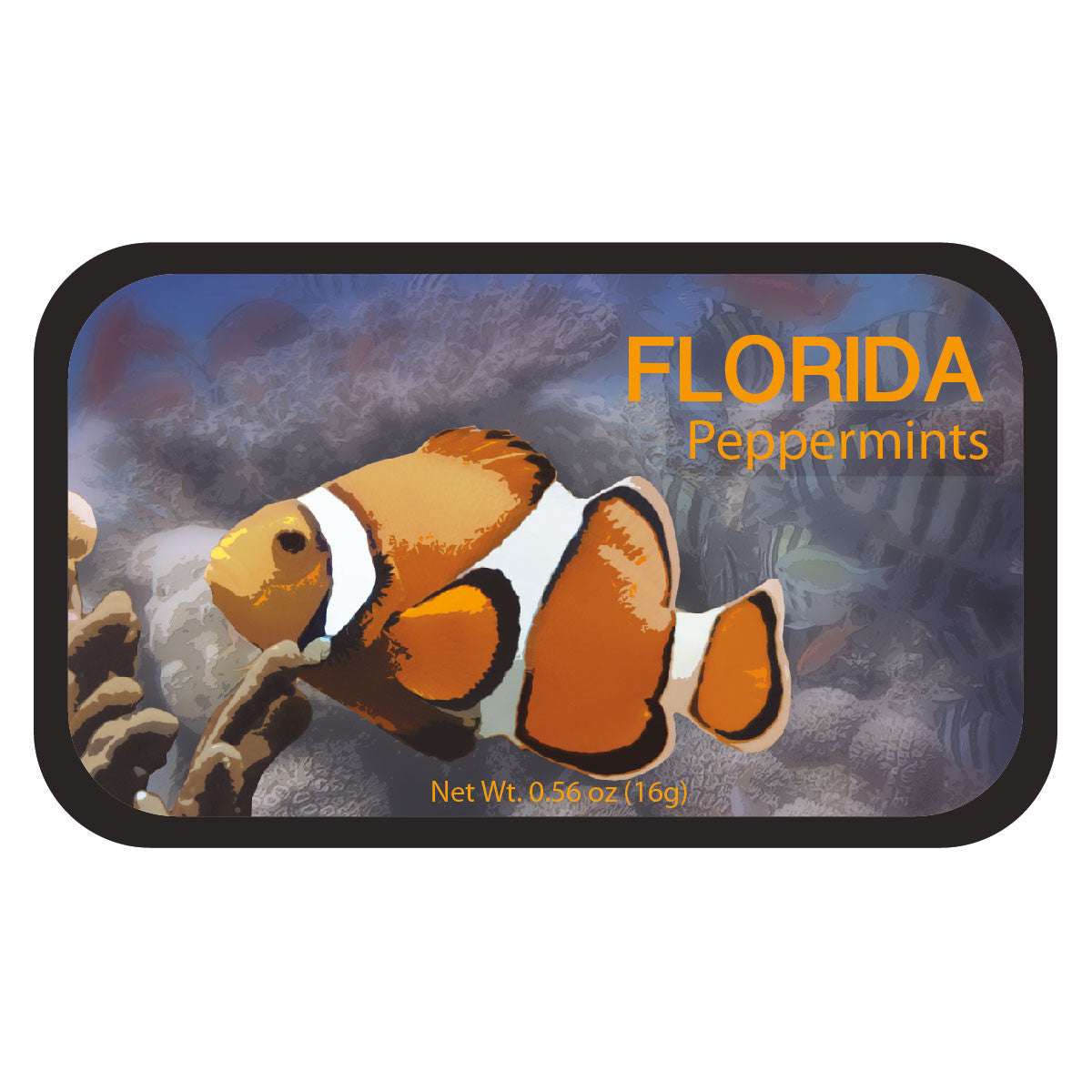 Clown Fish Florida - 0229S