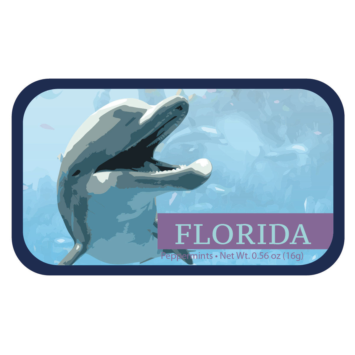 Laughing Dolphin Florida - 0234S