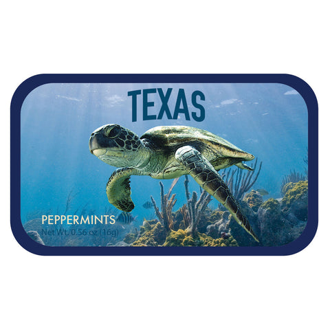 Sea Turtle Texas - 0238S