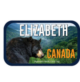 Canadian Black Bear - 0260ND