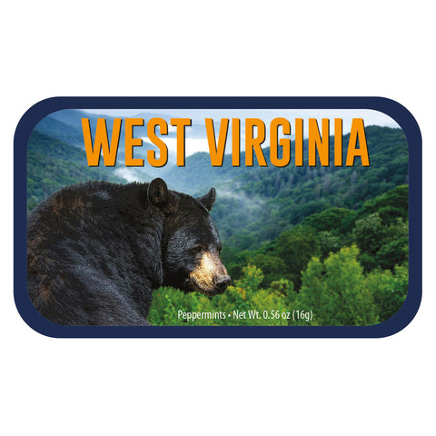 Black Bear West Virginia - 0260S