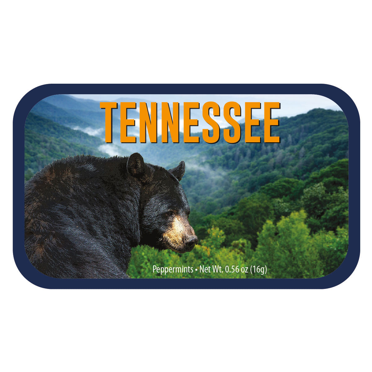 Black Bear Tennessee - 0260S