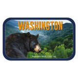 Black Bear Washington  - 0260S