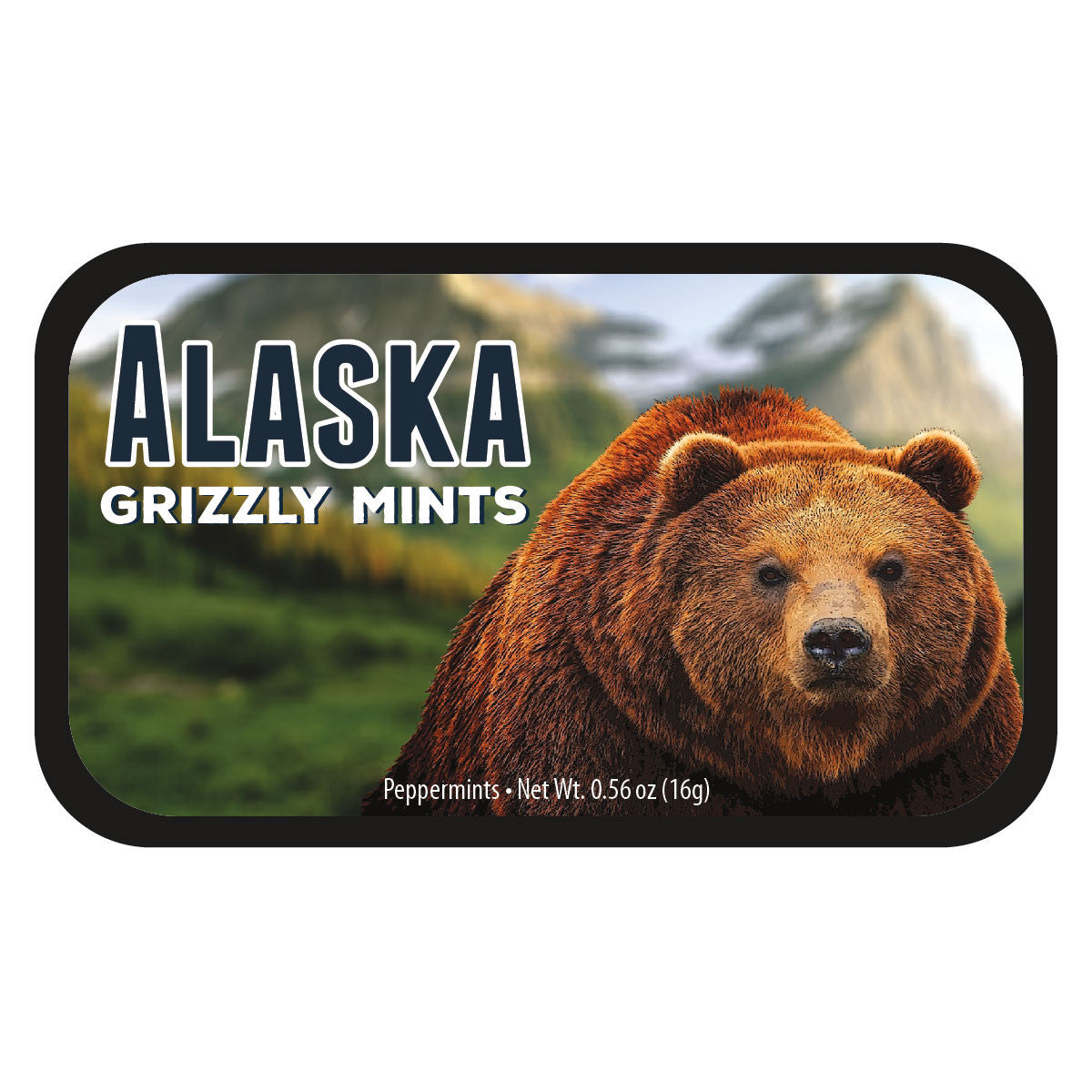 Grizzly Bear Alaska - 0261S