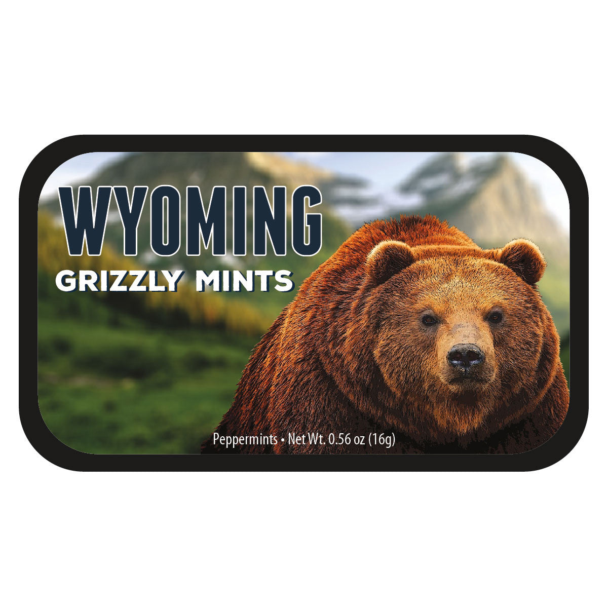 Grizzly Bear Wyoming - 0261S