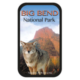 Big Bend Coyote - 0370S