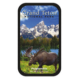Grand Tetons Moose - 0526S