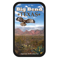 Big Bend Hawk - 0575S
