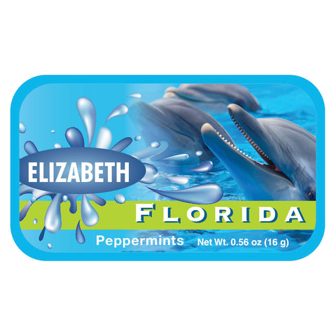 Flipper Florida - 0707ND