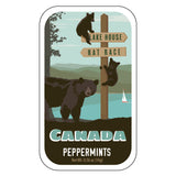 Bears at Lake Canada - 0966A