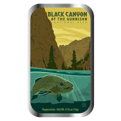 Black Canyon - 0955A