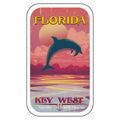 Dolphin Sunset Florida - 1508S