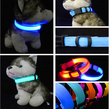 Load image into Gallery viewer, Luminous Anti-Lost LED Dog Collar