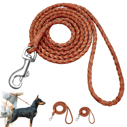 Dog-Walking-Training-Leash