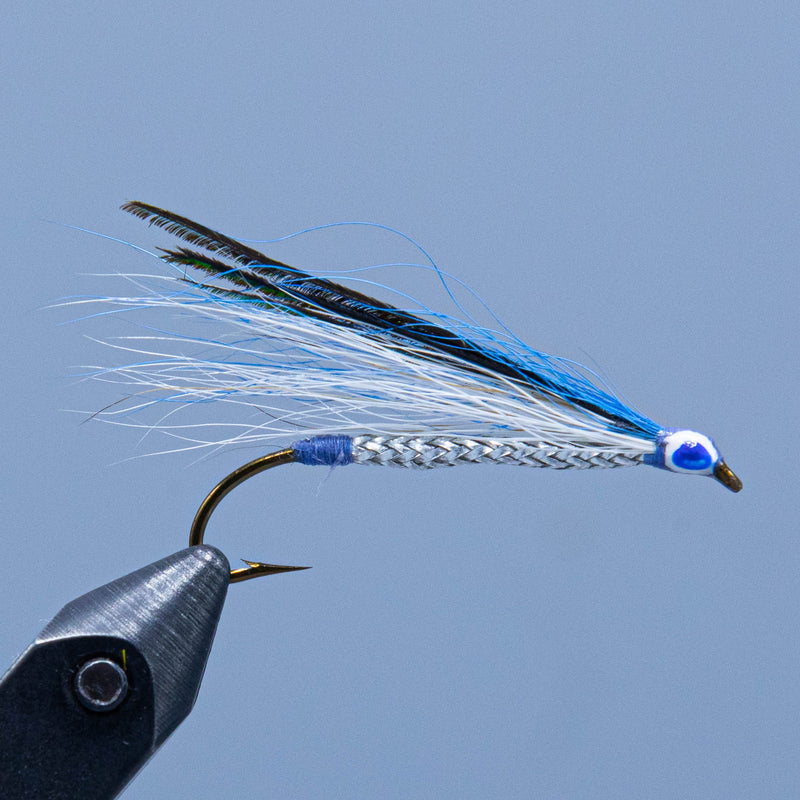 frost blue smelt at a maine fly shop