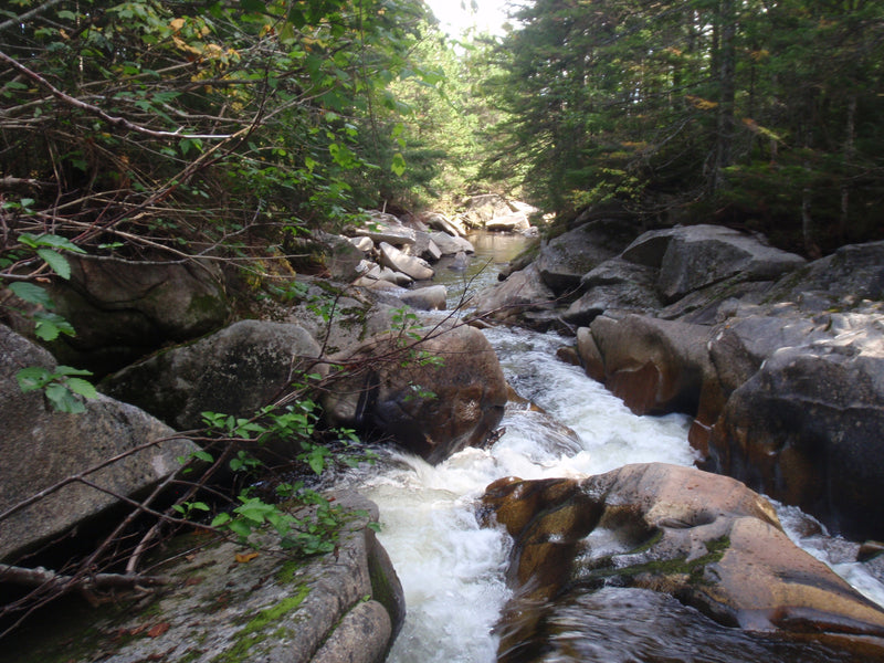 orbeton stream in the rangeley area