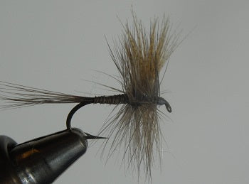 Quill Gordon classic Catskill style dry fly