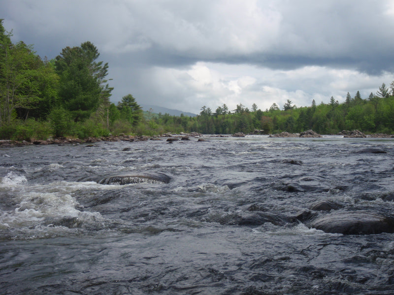 rapid river in western maine maine fly fishing