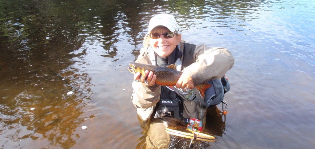 magalloway river brook trout maine fly fishing shop