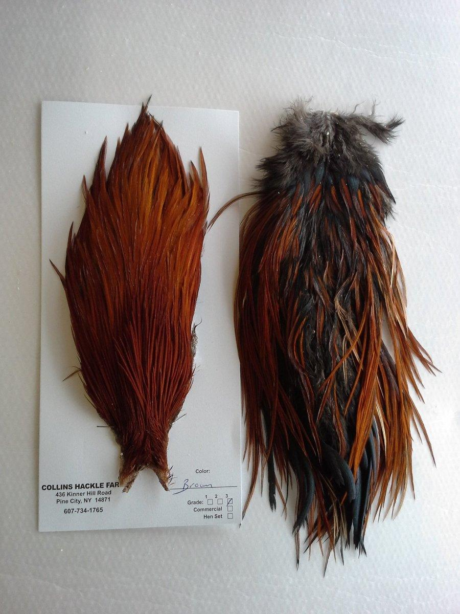 Collins hackle set - Brown from a maine fly shop neck and saddle feathers both included
