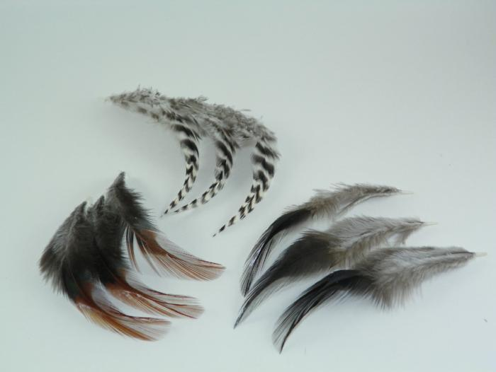 three types of feathers used for tailing fly fishing flies from Collins and Maine Fly Shop