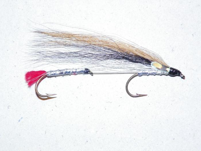 Black nose dace tandem fly for trolling lakes