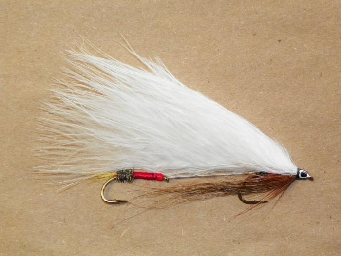 royal coachman from Rangeley Maine fly fishing shop