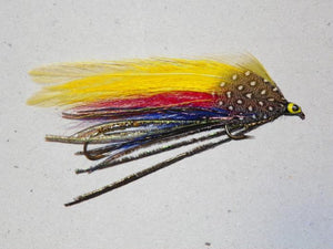 "brightly colored ""Footer Special"" tandem fishing streamer fly with yellow red and blue feathers and peacock herl underwing"